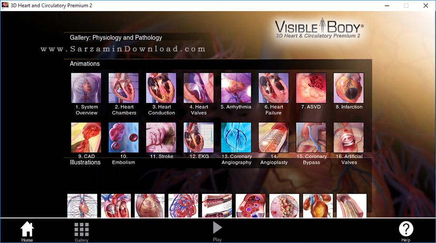 نرم افزار آموزش آناتومی فیزیولوژی 3 بعدی بدن انسان - Visible Body 3D Heart and Circulatory Premium