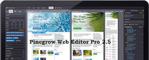 دانلود نرم افزار حرفه ای طراحی صفحات وب - Pinegrow Web Editor Pro 2.5 - دانلود رایگان