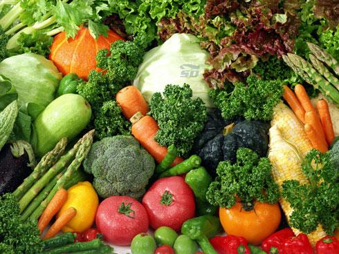 کتاب آموزش آشپزی - غذاهای گیاهی
